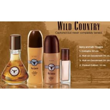 Avon's Wild Country Scent for Men