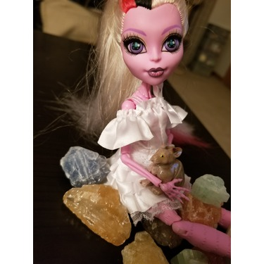 Monster High Dolls Reviews In Accessories Chickadvisor