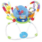 Baby Einstein Musical Motion 2-in-1 Stationary Jumper & Entertainer