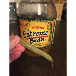 Matt & Steve's The Extreme Bean