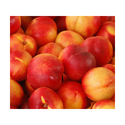 Peach Nectar Body Lotion