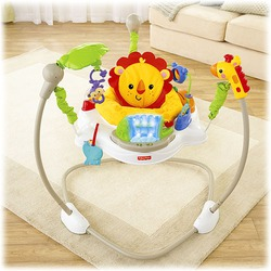 Fisher-Price Rain Forest Friends Jumperoo
