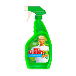 Mr. Clean Spray with Gain