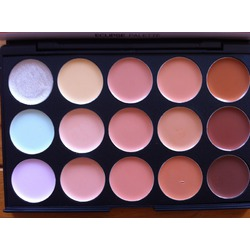 Coastal Scents Eclipse Palette - 15 Shades