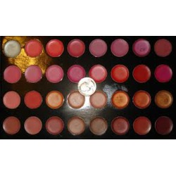 Shany Cosmetics Lipstick Palette