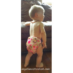 Piddly Winx Cloth Diapers
