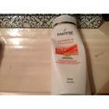 Pantene Pro-V Ultimate 10 BB Creme Shampoo