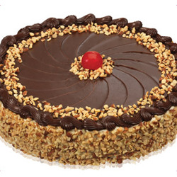 Baskin Robbins Praline 'n Cream Fudge Nut Round Cake
