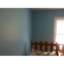 hometrends C-I-L Interior Latex Acrylic Paint
