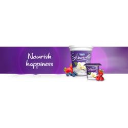 Danone Silhouette Vanilla Yogurt