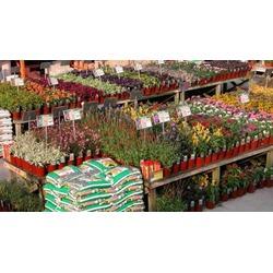 Home Depot Garden Center