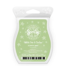 Scentsy Bar White Tea and Cactus