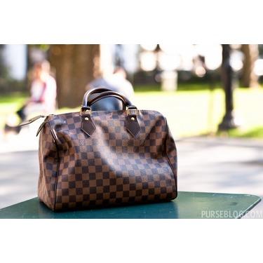 Louis Vuitton Speedy 30 Damier Hand Bag