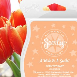 Scentsy A Wink and a Smile Scentsy Bar