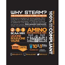 Rivalus Steam