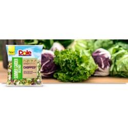 Dole Chopped Summer Garden Blend Salad Mix