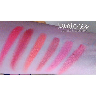 """Shany Cosmetics """"She's not Shy"""" 6 Color Blush Palette"""