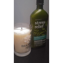 Bath & Body Works Stress Relief Eucalyptus Spearmint Hand Cream