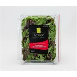 Fresh Attitude Spring Mix Greens