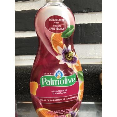 Palmolive Dish & Sink