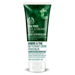 The Body Shop Tea Tree Oil Cool and Creamy Wash