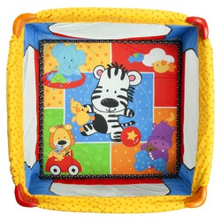 Fisher Price Play Yard