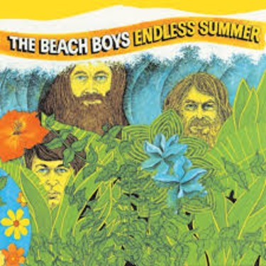 The Beach Boys Endless Summer Album