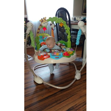 02068636cd1 Fisher Price Go Wild Jumperoo reviews in Baby Gear - Swings, Jumpers ...