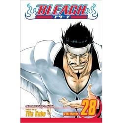 Bleach Vol. 28