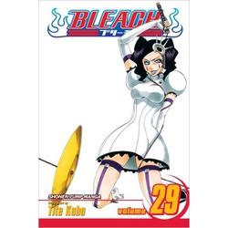 Bleach, Vol. 29