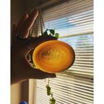 Pear soap bar