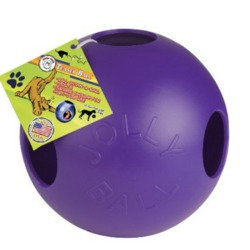Jolly Pet 10-Inch Teaser Ball, Purple