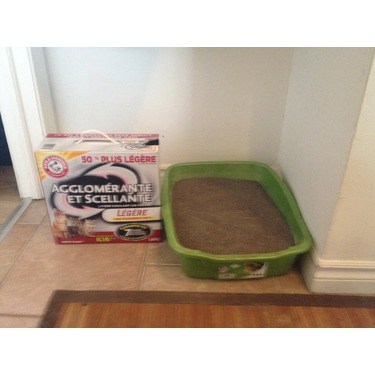 Arm & Hammer Clump & Seal LightWeight Litter