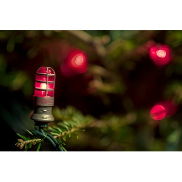 Budweiser Red Light Holiday Lights