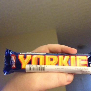 Nestle Yorkie Chocolate Bar