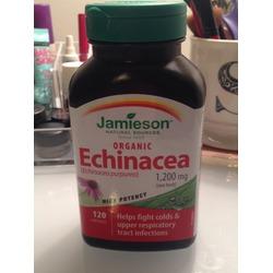 Jamieson Organic Echinacea