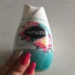 Renuzit pure breeze air freshener
