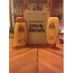 Garnier Whole Blends Nourishing Avocado Oil and Shea Butter Shampoo
