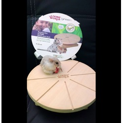 Living World Running Disk - for small animals