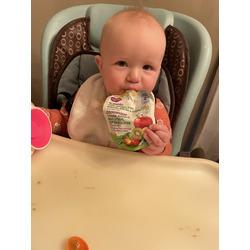 Parent's choice organic baby food puree
