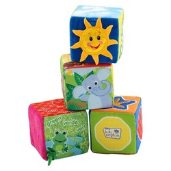 Baby Einstein Explore & Discover Blocks