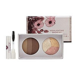 Anastasia Highlighting Brow Kit