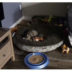 Kirkland dog bed