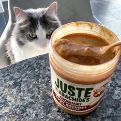Kraft All Natural Crunchy Peanut Butter