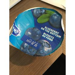 Oikos Greek yogurt blueberry