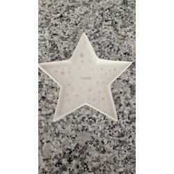 Lucky star catch all tray