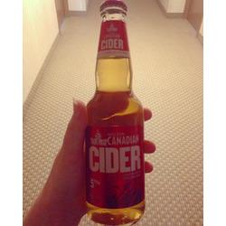 Molson Canadian Cider Beer 5%