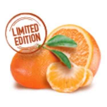 Oikos Greek Yogurt Zesty Mandarine Orange