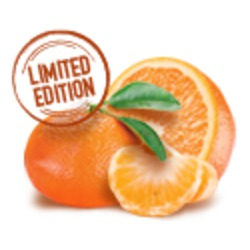 Oikos Greek Yogurt Zesty Mandarine Orange