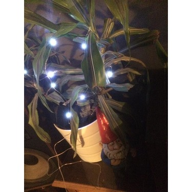 Eonfire Dancing String Lights